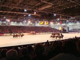 Partner Pferd Leipzig 2008