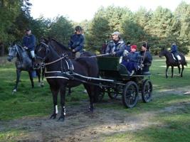 Herbstausritt 2008